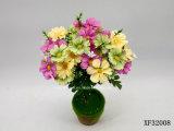 Singolo gambo fiore artificiale/di plastica/di seta della margherita (XF32008)
