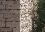 ベージュ石灰岩の建物の築壁のタイル