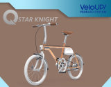 TsinovaのカラーElectrciの青銅色バイク