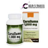 La perte de poids efficace Capsules pilule minceur, OEM disponibles