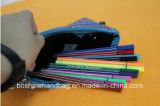 Malote colorido da caixa de lápis do neopreno