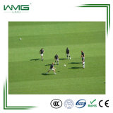 Hot Sale Sports Gazon Gazon artificiel pour terrain de football