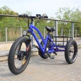 Triciclo elétrico do pneu gordo para o homem com o freio de disco do poder superior e do dobro