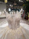 Aolanes nova chegada moderno Tulle vestidos de casamento