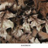 El árbol Wtp de Camo filma la hoja verdadera soluble en agua de las películas B069kmc52b Hydrographics