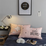 Устанавливает Coral постельные принадлежности бархата с тканьем крышки подушки и Quilt