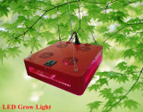 o diodo emissor de luz do poder superior da ESPIGA 300W cresce a luz