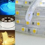 適用範囲が広いLEDのストリップPVC SMD5050紫色SMDストリップLEDライト