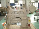 Nat855-C de Cummins Engine para maquinaria de construcción