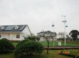 De Wind van Fonergy & Zonne Hybride van-netStraatlantaarn voor Huis