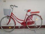 26 Nova Cidade Lady Bike