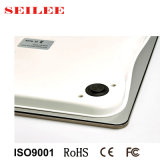 Échelle adulte de pesage électronique de plaque d'acier inoxydable de haute précision