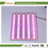 Keisue luz de la placa de LED para el hogar Granja Vertical