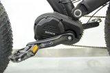 오래 견딘 건전지를 가진 최신 판매 중앙 드라이브 전기 자전거