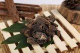 Organischer Pilz bebaute getrocknete Morchel-hochwertige Nahrung