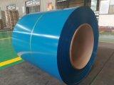 1100 3003 3004 3105 un colore della 8011 lega hanno ricoperto la bobina di alluminio