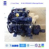 Motor Diesel interno - bote de salvamento conduzido do G.R.P. para 6persons