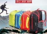 Sacchetto di viaggio dello zaino di sport e di svago di alpinismo
