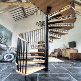 Escaleras espirales para la venta en escalera del pasamano de Filipinas Galss