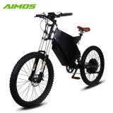 En15194普及した新しいデザインによって隠される電池2000Wの電気バイク