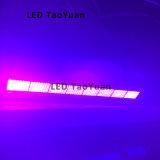 395nm 800W LED helle aushärtende UVlampe