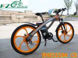 完全な中断電気マウンテンバイクTde01