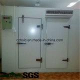 Cámara fría, sitio de conservación en cámara frigorífica