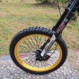 OEM는 낮은 MOQ 싼 가격 38t 강철 사슬 바퀴 산악 자전거 MTB 자전거를 서비스한다