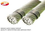 ACSR/Aw Kabel van het Aluminium van Condutor van het Aluminium de Beklede Staal Versterkte