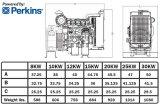 パーキンズエンジン20171010Aを搭載する7.2kw/9kVAディーゼル無声発電機