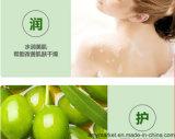 Da pele verde-oliva do gel do chuveiro de Bioaqua champô de refrescamento do corpo do gel da limpeza do corpo