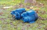 Bomba de agua periférica eléctrica del nuevo diseño (JFB)