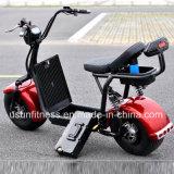Fetter Rad-Gummireifen Usun Harley Citycoco Electric Fahrrad mit Cer