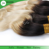 Ton-blonde Farben-peruanisches Jungfrau Reny Haar des Menschenhaar-zwei