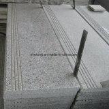 De het lichtgrijze Stootbord en Treden van het Graniet van de Steen G603 voor Constrution