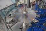 Volledige Automatische Roterende het Vullen van het Water van de Fles van het Huisdier Grote Zuivere Machine