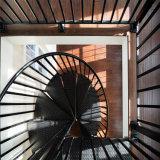 普及したデザイン屋外の使用の全鋼鉄螺旋階段