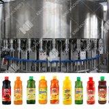Abgefüllte Saft-Produktionszweig-/Fruchtsaft-Verarbeitungsanlage beenden