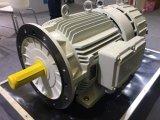Ffl-100kw/150rpm/AC690V Dauermagnetgenerator (PMG/PMA/Hydro)