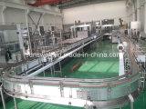 Planta de agua mineral y maquinaria