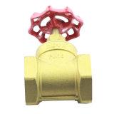 Valvola a saracinesca d'acciaio professionale fornita del filetto interno d'ottone della valvola a saracinesca