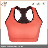 La mujer Deporte Gimnasio sujetadores ropa interior de damas de desgaste