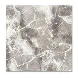 De ceramische Tegel van de Vloer van het Porselein met 600*600mm