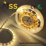 Striscia flessibile 24V di SMD 2835 economizzatori d'energia LED