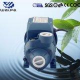 380V 60 Hz en trois phases de la pompe à eau électrique avec le meilleur prix