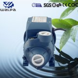 380V 60Hz 최고 가격을%s 가진 삼상 전기 수도 펌프