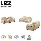Multi Colora подлинной кожаный диван Lzh002