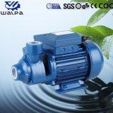 1HP Super haute qualité de chef de la pompe de périphériques avec rotor en laiton pour le ménage