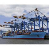 Migliori agente di trasporto dell'aria & trasporto di mare da Shenzhen/Guangzhou a Bacu, Azerbaijan