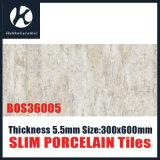 De slanke Tegel van het Porselein (BOS36005)